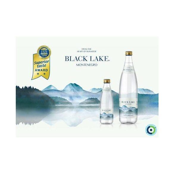 Black Lake forrásvíz 0,25l üveg palackban