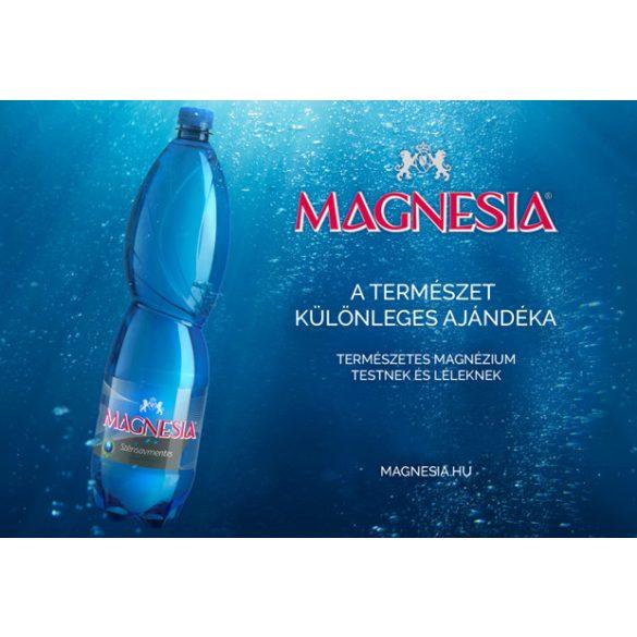 Magnesia természetes magnézium tartalmú szénsavmentes ásványvíz 1,5l