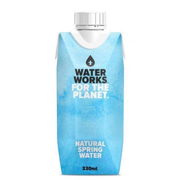 Cactus Water 0,33l Tetra Pack