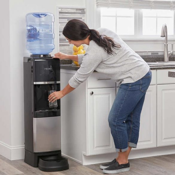 V1136W Top Loading Water Cooler With Pet Station